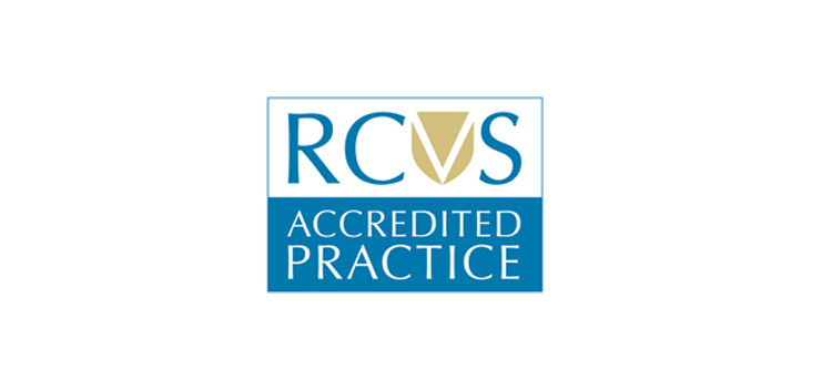 Chertsey Vets is a RCVS Accredited Practice